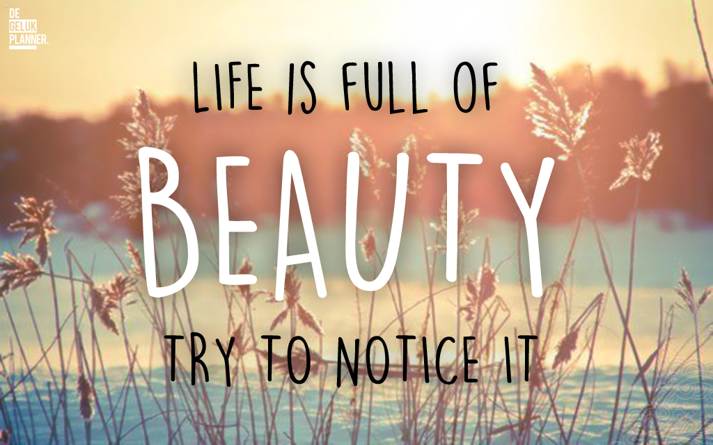 LIFE IS FULL OF BEAUTY TRY TO NOTICE IT - ELKE DAG IS MOOI