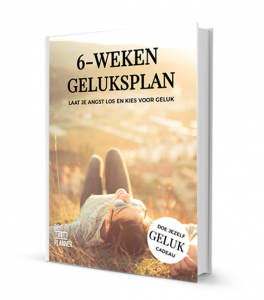 geluk e-book gelukplanner
